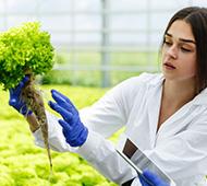 Máster en Calidad, Seguridad Alimentaria, Dietética y Nutrición